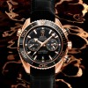 OMEGA PLANET OCEAN CERAGOLD SE156_Planet Ocean 45mm chrono_232.63.46.51.01.001