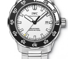 Reference IW356805 from IWC