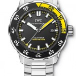 Reference IW356801 from IWC