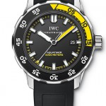 Reference IW356802 from IWC